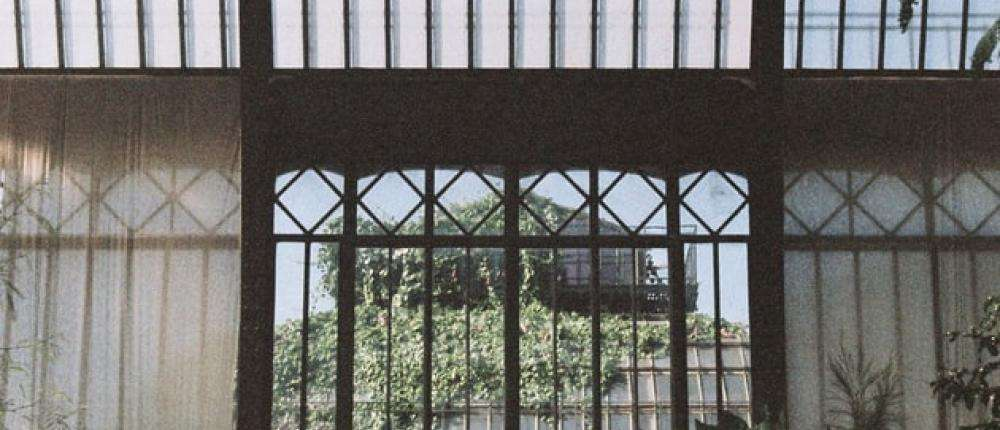 The greenhouses of the Jardin des Plantes; a world tour under glass